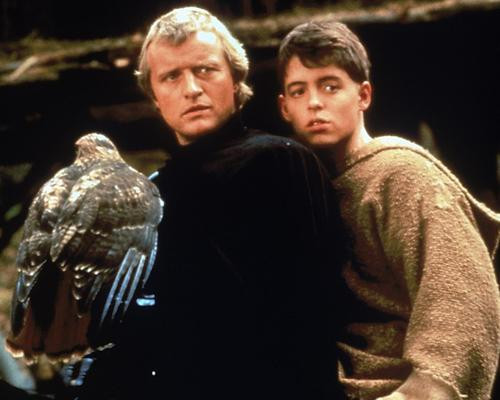 This is an image of 263779 Ladyhawke Photograph & Poster
