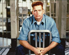 This is an image of 216837 Harry Connick Jr Photograph & Poster