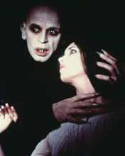 This is an image of 225390 Nosferatu Photograph & Poster