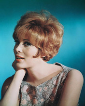 This is an image of 225911 Jill St. John Photograph & Poster