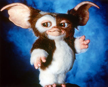 This is an image of 228592 Gremlins Photograph & Poster