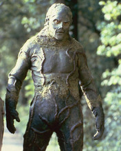 This is an image of 258084 Swamp Thing Photograph & Poster