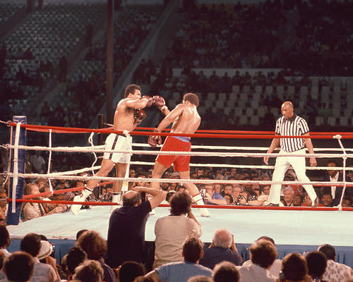 This is an image of 253687 Muhammad Ali & George Foreman Photograph & Poster