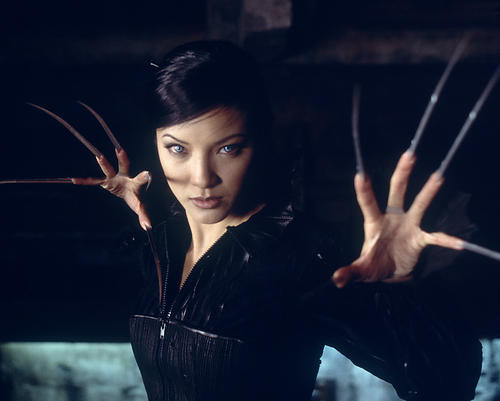 This is an image of 260065 Kelly Hu Photograph & Poster