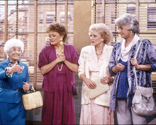 This is an image of 267350 The Golden Girls Photograph & Poster