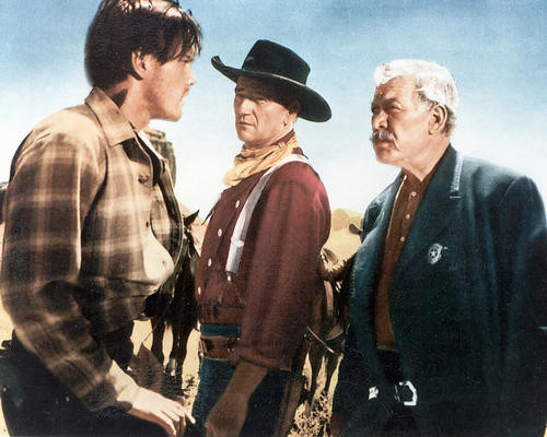 This is an image of 267511 The Searchers Photograph & Poster