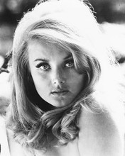 This is an image of 186444 Barbara Bouchet Photograph & Poster