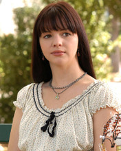 This is an image of 271811 Amber Tamblyn Photograph & Poster