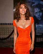 This is an image of 271425 Halle Berry Photograph & Poster