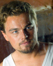 This is an image of 274156 Leonardo Dicaprio Photograph & Poster