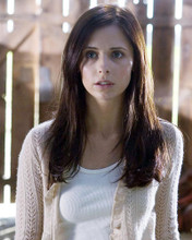 This is an image of 275581 Sarah Michelle Gellar Photograph & Poster