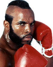 This is an image of 275661 Mr. T Photograph & Poster