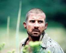 This is an image of 275647 Dominic Purcell Photograph & Poster