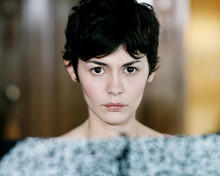 This is an image of 276890 Audrey Tautou Photograph & Poster