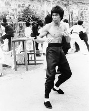 This is an image of 169342 Bruce Lee Photograph & Poster