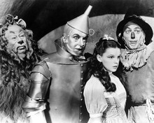 This is an image of 171282 The Wizard of Oz Photograph & Poster