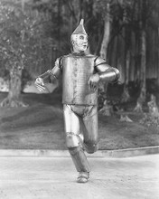 This is an image of 171165 The Wizard of Oz Photograph & Poster