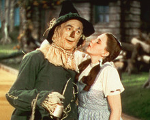 This is an image of 256896 The Wizard of Oz Photograph & Poster