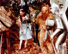 This is an image of 257730 The Wizard of Oz Photograph & Poster