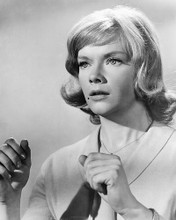 This is an image of 192607 Anne Francis Photograph & Poster