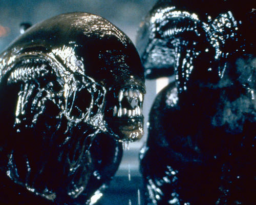 This is an image of 282244 Alien: Resurrection Photograph & Poster