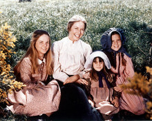 This is an image of 282274 Little House on the Prairie Photograph & Poster