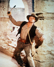 This is an image of 282280 The Wild Bunch Photograph & Poster