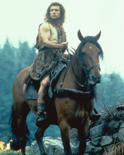 This is an image of 282340 Braveheart Photograph & Poster