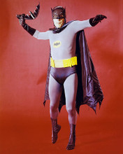 This is an image of 282521 Batman Photograph & Poster