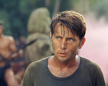 This is an image of 282645 Martin Sheen Photograph & Poster