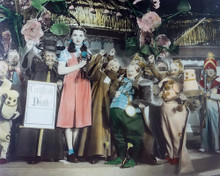 This is an image of 283565 The Wizard of Oz Photograph & Poster
