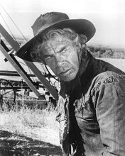 This is an image of 193543 Lee Marvin Photograph & Poster