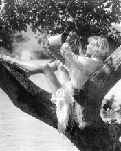 This is an image of 193004 Bo Derek Photograph & Poster