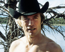 This is an image of 283142 Clint Eastwood Photograph & Poster