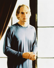 This is an image of 214529 Julian Sands Photograph & Poster
