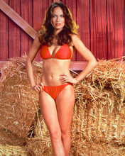 This is an image of 263958 Catherine Bach Photograph & Poster