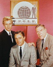 This is an image of 210459 The Man from U.N.C.L.E. Photograph & Poster