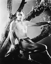 This is an image of 169149 Johnny Weissmuller Photograph & Poster