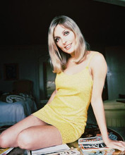 This is an image of 216290 Sharon Tate Photograph & Poster