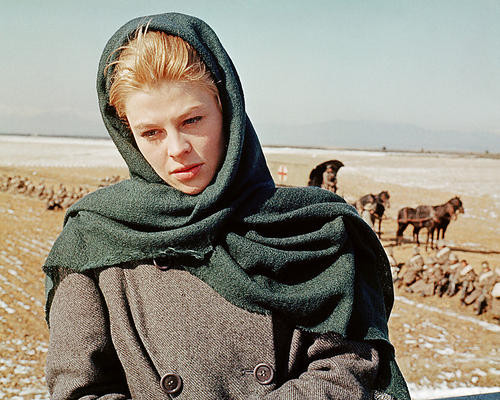 This is an image of 284032 Doctor Zhivago Photograph & Poster