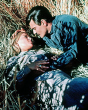 This is an image of 284034 Doctor Zhivago Photograph & Poster