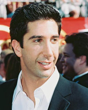 This is an image of 239359 David Schwimmer Photograph & Poster