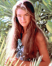 This is an image of 278253 Brooke Shields Photograph & Poster