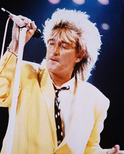 This is an image of 211987 Rod Stewart Photograph & Poster