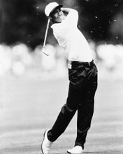 This is an image of 165672 Tiger Woods Photograph & Poster