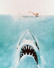 This is an image of 245577 Jaws Photograph & Poster