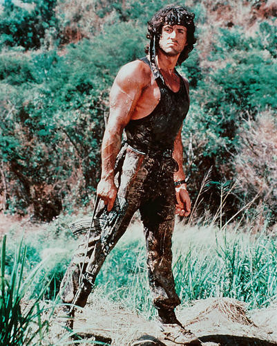 This is an image of 248636 Sylvester Stallone Photograph & Poster