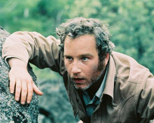 This is an image of 242095 Richard Dreyfuss Photograph & Poster