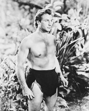 This is an image of 171702 Lex Barker Photograph & Poster