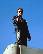 This is an image of 252119 Arnold Schwarzenegger Photograph & Poster